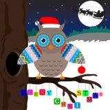 Owl med glada Cristmass Arkivfoto