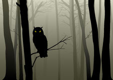 Owl In The Misty Woods royaltyfri illustrationer