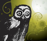 Owl and the Moon Stock Photos