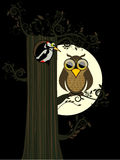 Owl and moon Stock Image