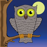 Owl and moon Royalty Free Stock Photos