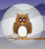 Owl With Moon Background Royalty Free Stock Images