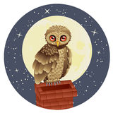 Owl and Moon Stock Photos