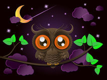 Owl and moon, nocturnal sky. Stock Images