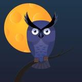 Owl, moon vector cartoon illustration. Owl, moon vector flat cartoon illustration. Dark and night royalty free illustration
