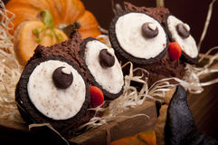 Owl muffins Royalty Free Stock Photos