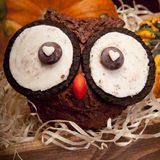 Owl muffins. For Halloween. Owl cookie royalty free stock images