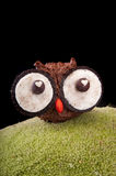 Owl muffins stock image