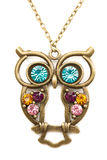 Owl necklace adorned with precious stones. Isolate on white Royalty Free Stock Photography