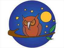 Owl at night Stock Photos