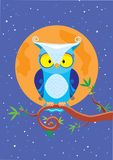 Owl night. The  illustration an owl sits on a branch at night the moon shines Royalty Free Stock Images
