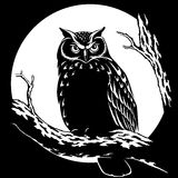 Owl at night on a background of the moon vector illustration. Owl at night in a forest on a tree on a background of the moon black background vector illustration royalty free illustration