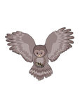 Owl. Night predator. Owl flying with a mouse caught Royalty Free Stock Image