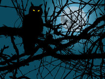 Owl In Night. Scary moonlight forest background with silhouette of owl stock illustration