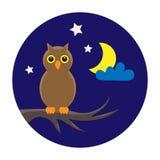 Owl on night sky royalty free stock image
