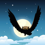 Owl on the night sky with moon Stock Images
