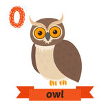 Owl. O letter. Cute children animal alphabet in vector. Funny ca Stock Photos