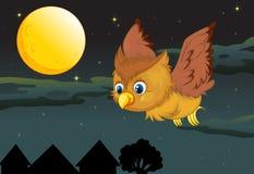 Owl och fullmåne Arkivbild