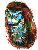Owl. The old owl as a symbol wisdom Stock Image