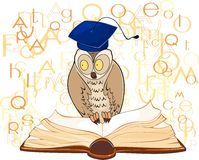 Owl and open book Stock Photos