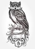 Owl with ornate scull design vintage style. Stock Images