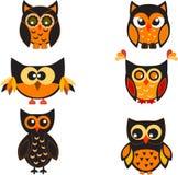 Owl, Owl Illustration, Owl Vector. Multicolor owls on white background, owls, fauna, bird, orange owl,  Halloween decoration, black owl Royalty Free Stock Photos