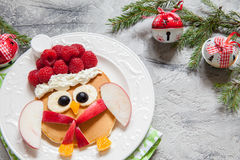 Owl pancake for Christmas breakfast Royalty Free Stock Photos