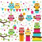 Owl party set Stock Photo