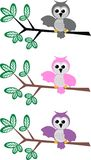 Owl pattern Stock Images