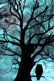 Owl perched in ancient tree on moonlit night. Silhouette of an owl perched in an ancient tree on a bright cold moonlit night Royalty Free Stock Photography