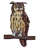 Owl perched on branch royalty free stock photo