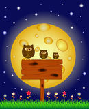 Owl perched on a bulletin board under the full moon Stock Image