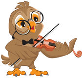 Owl plays the violin Stock Photography