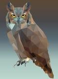 Owl Portrait Low Poly Stock Image