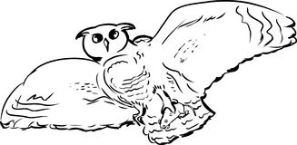 Owl with Prey Outline Royalty Free Stock Images