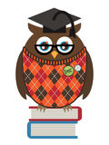 Owl professor Stock Photography