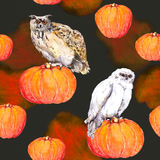 Owl on pumpkin. Halloween watercolor repeating background Stock Photography
