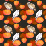 Owl on pumpkin. Halloween watercolor seamless pattern. Owl on pumpkin. Halloween watercolor repeating pattern royalty free stock photos