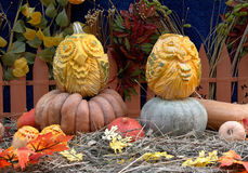 Owl pumpkins at the festival Golden autumn Royalty Free Stock Images