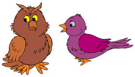 Owl and purple bird Royalty Free Stock Images