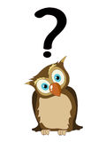 Owl with question mark Stock Images