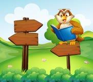 An owl reading above an empty arrow signboard Stock Photos