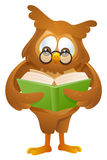 Owl - reading book Stock Photo