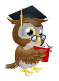 Owl reading book. An illustration of a wise owl on a stack of books reading wearing glasses and a mortar board convocation hat Royalty Free Stock Images