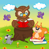 Owl reading a book for animals Royalty Free Stock Photography