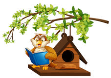 Owl reading book by the birdhouse. Illustration royalty free illustration