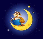 An owl reading a book on the moon Royalty Free Stock Image