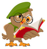 Owl reading book scout Stock Image
