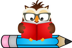 Owl reading book sitting on pencil Royalty Free Stock Photos