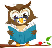 Owl reading a book on tree branch. Vector illustration of Owl reading a book on tree branch on white stock illustration